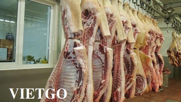 Cơ hội xuất khẩu 1 container 40ft thịt bò sang thị trường Nga và Ukraine