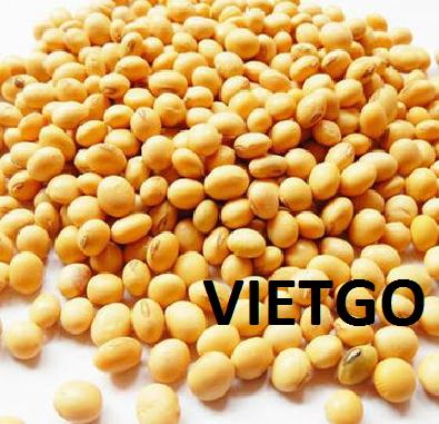 Cơ hội xuất khẩu 40 tấn đậu nành sang thị trường Trung Quốc