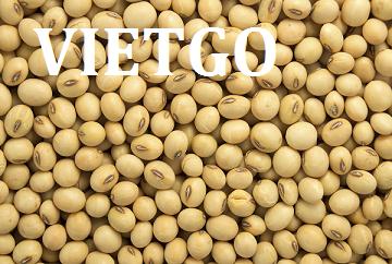 Cơ hội xuất khẩu 2000 tấn đậu nành sang thị trường Trung Quốc