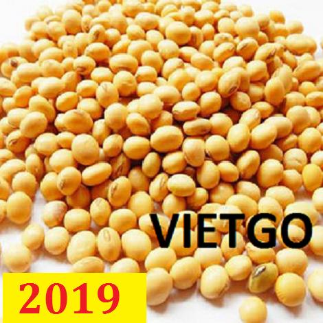 ĐƠN HÀNG CẢ NĂM: Cơ hội xuất khẩu đậu nành số lượng lớn sang Hàn Quốc và Kenya