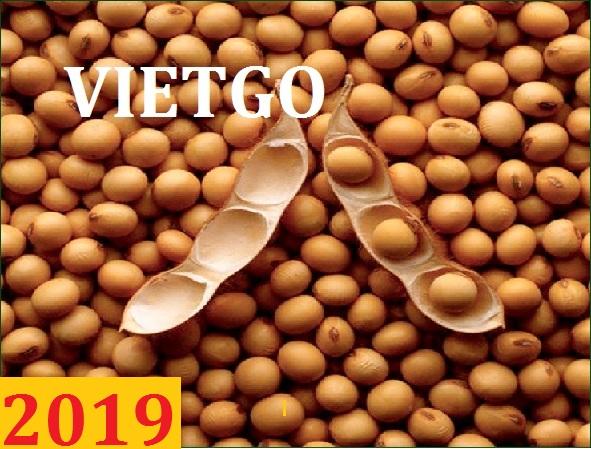 Đơn hàng cả năm: Cơ hội xuất khẩu đậu nành sang thị trường Trung Quốc