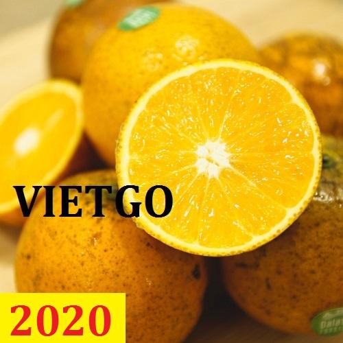 Cơ hội giao thương – Đơn hàng thường xuyên – Cơ hội xuất khẩu cam tươi từ Việt Nam sang thị trường Maldives.