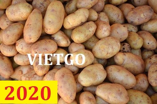 Cơ hội giao thương – Đơn hàng thường xuyên - Cơ hội xuất khẩu khoai tây sang thị trường Sri Lanka.