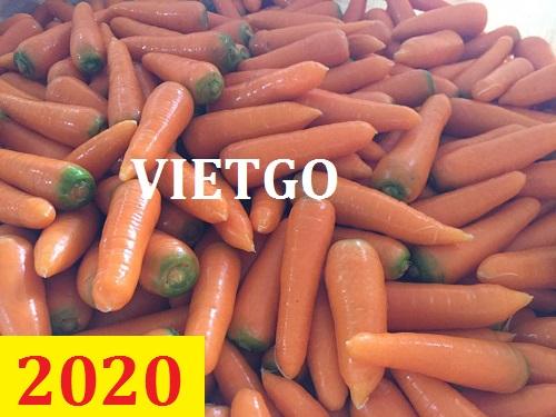 Cơ hội giao thương – Đơn hàng thường xuyên - Cơ hội xuất khẩu cà rốt sang thị trường Maldives.