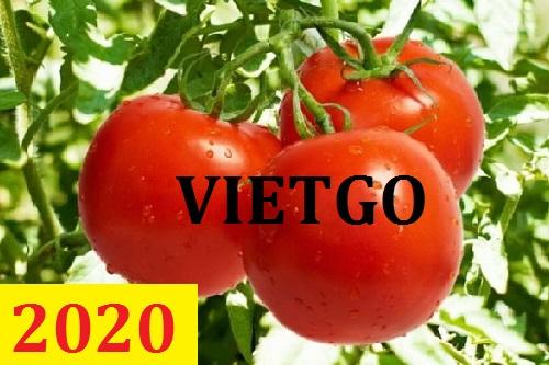 Cơ hội giao thương – Đơn hàng thường xuyên – Cơ hội xuất khẩu 2 container 20ft cà chua sang thị trường Dubai.