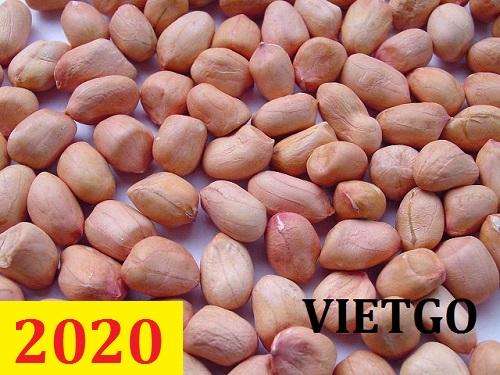 Cơ hội giao thương – Đơn hàng thường xuyên - Cơ hội xuất khẩu 500 MT hạt lạc tách vỏ sang thị trường Trung Quốc.