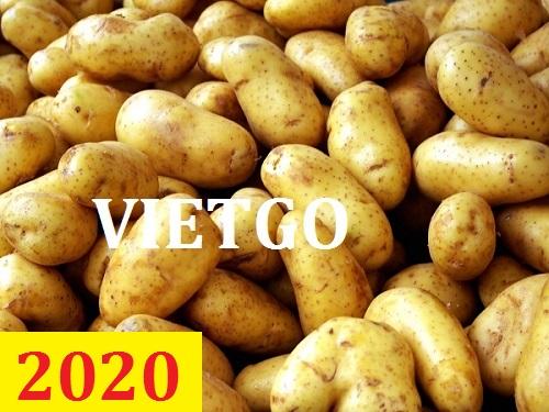 Cơ hội giao thương – Đơn hàng thường xuyên – Cơ hội xuất khẩu khoai tây sang thị trường Malaysia.