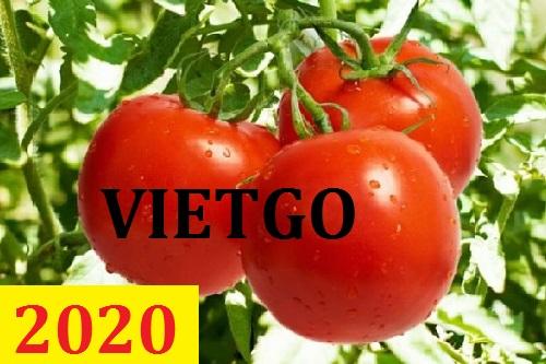 Cơ hội giao thương – Đơn hàng thường xuyên – Cơ hội xuất khẩu Cà chua sang thị trường Dubai.