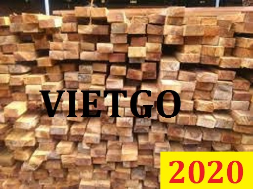 Cơ hội giao thương đặc biệt – Đơn hàng thường xuyên - Cơ hội xuất khẩu gỗ bạch đàn xẻ sang thị trường Ấn Độ