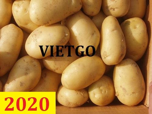 Cơ hội giao thương – Đơn hàng thường xuyên - Cơ hội xuất khẩu khoai tây sang thị trường Jamaica.