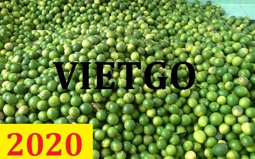 Cơ hội giao thương – Đơn hàng thường xuyên – Cơ hội xuất khẩu chanh xanh sang thị trường Ấn Độ.