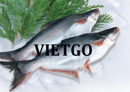 Cơ hội giao thương – Đơn hàng cả năm – Một doanh nghiệp tại Mỹ đang cần tìm đối tác cung cấp cá Swai tại Việt Nam