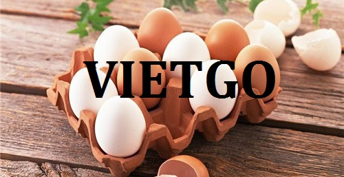 Cơ hội giao thương – Cơ hội xuất khẩu Trứng gà sang thị trường Ả Rập.