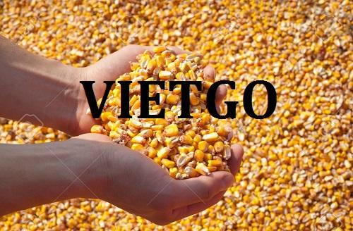 Cơ hội giao thương – Đơn hàng Thường xuyên - Cơ hội xuất khẩu Ngô Vàng sang thị trường Nepal.