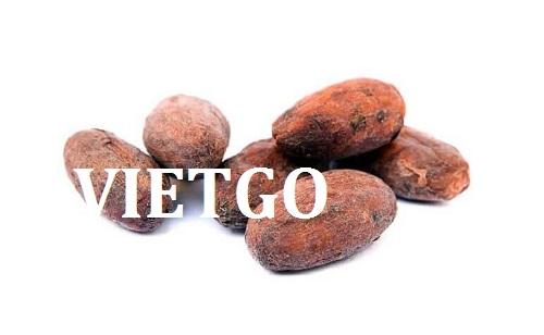 Cơ hội giao thương  - Đơn Hàng Thường Xuyên -  Cơ hội xuất khẩu Cacao sang thị trường Ấn Độ