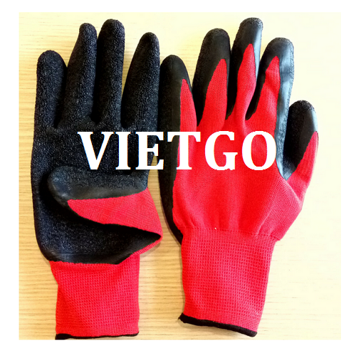 Cơ hội giao thương – Đơn hàng thường xuyên - Cơ hội xuất khẩu găng tay lao động sang thị trường Maroc