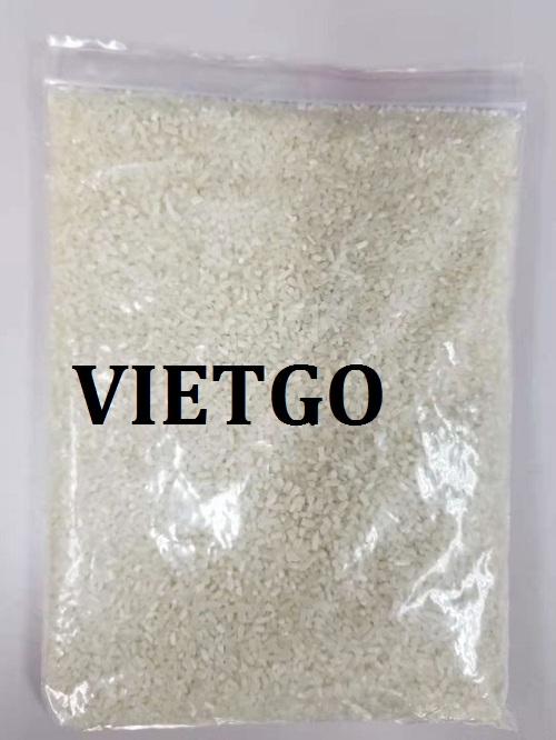 Cơ hội giao thương – Đơn hàng đặc biệt hàng tháng – Cơ hội xuất khẩu gạo tấm sang thị trường Trung Quốc