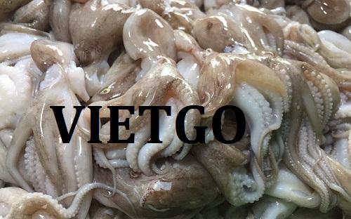 Cơ hội giao thương – Cơ hội xuất khẩu Bạch tuộc sang thị trường Chile