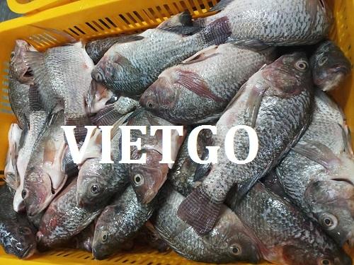 Cơ hội giao thương – Cơ hội xuất khẩu cá rô phi sang thị trường Pháp vô cùng tiềm năng