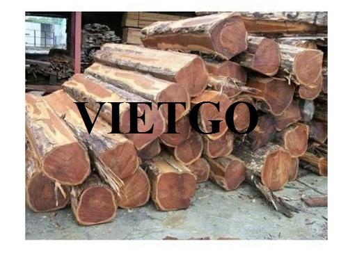 Cơ hội xuất khẩu gỗ teak sang thị trường Ấn Độ.