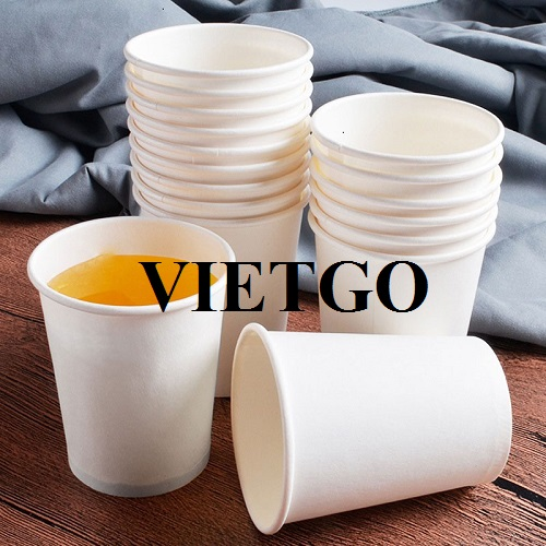 Opportunity to export more than 300 containers of 40HC paper cups per year to the Israel market