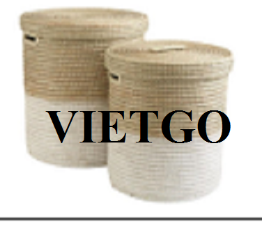 Opportunities to export bamboo rattan baskets and chandeliers monthly to the Israeli market