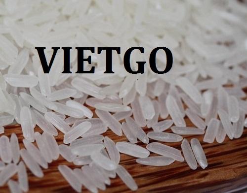Cơ hội xuất khẩu gạo trắng sang thị trường châu Phi và châu Âu