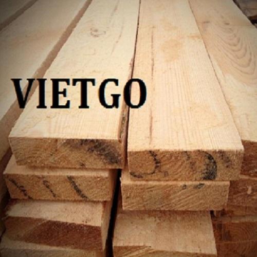 Cơ hội xuất khẩu 50 container 20ft gỗ thông xẻ hàng tháng sang thị trường Mỹ