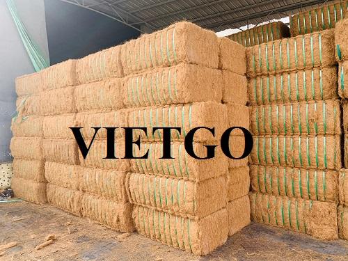 Cơ hội xuất khẩu 100 container 40HC xơ dừa mỗi năm sang thị trường Trung Quốc
