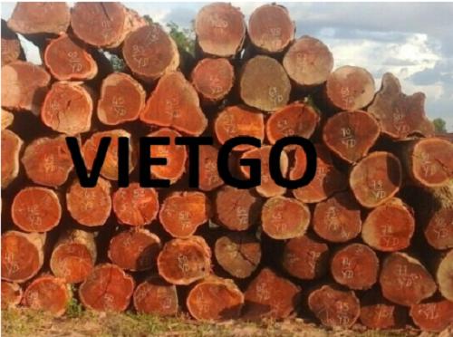 Cơ hội xuất khẩu gỗ dẻ gai và gỗ căm xe tròn sang thị trường Bangladesh