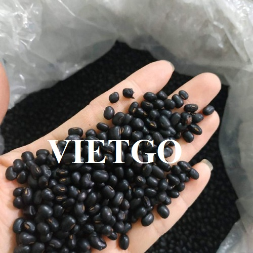 Opportunity to export Beans to Angola