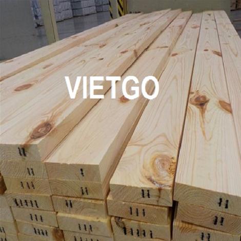 Cơ hội xuất khẩu 10 container 40HQ gỗ thông xẻ  hàng tháng sang thị trường Ấn Độ