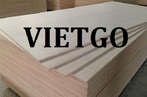 Cơ hội xuất khẩu 10 container 40HQ gỗ dán hàng tháng sang thị trường Ấn Độ