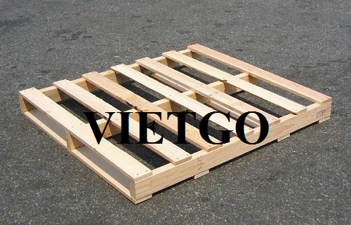 Cơ hội xuất khẩu 5 container 40ft pallet gỗ thông sang thị trường Iraq