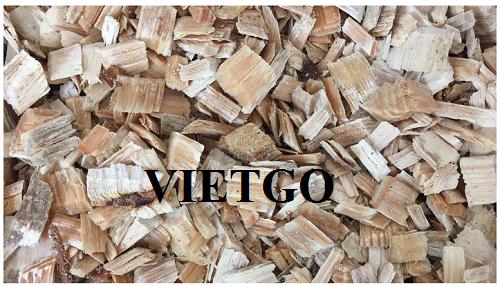 Cơ hội xuất khẩu 5000 tấn gỗ thông vụn hàng tháng sang thị trường Trung Quốc