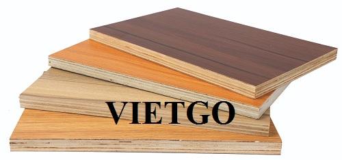 Cơ hội xuất khẩu 12 container 40ft gỗ dán phủ melamine sang thị trường Ukraine