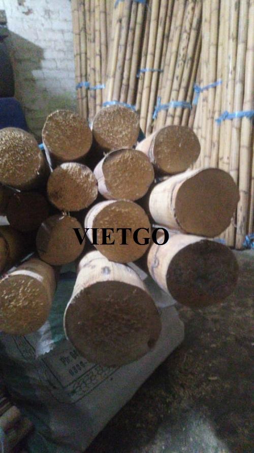 Cơ hội xuất khẩu sản phẩm gậy tre khô sang thị trường Pakistan