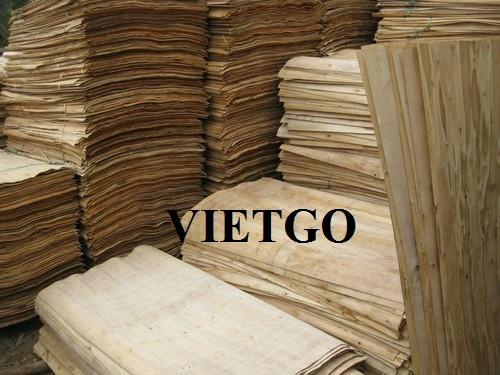 Cơ hội xuất khẩu 500m3 ván bóc lõi gỗ bạch dương sang thị trường Hàn Quốc