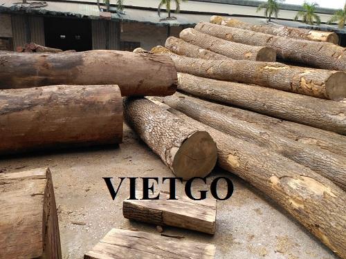 Cơ hội xuất khẩu gỗ thông số lượng lớn sang thị trường Trung Quốc