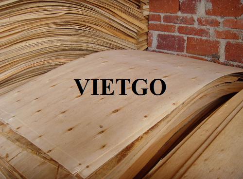 Cơ hội xuất khẩu 10 container 40ft ván bóc lõi gỗ bạch đàn và gỗ keo sang thị trường Ấn Độ