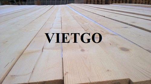 Cơ hội xuất khẩu 5 container 40ft gỗ thông xẻ hàng tháng sang thị trường Trung Quốc