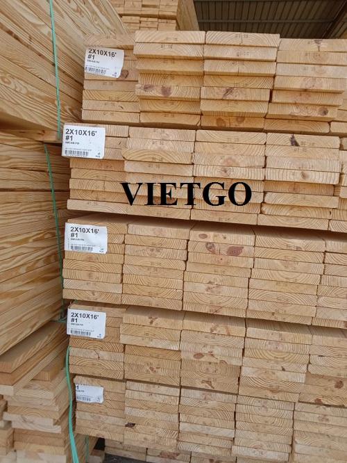 Cơ hội xuất khẩu 5 container 20ft gỗ thông xẻ sang thị trường Ấn Độ