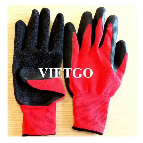Cơ hội xuất khẩu găng tay lao động cho doanh nghiệp đến từ Ba Lan