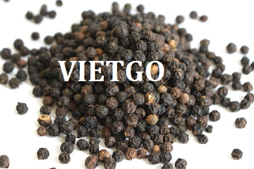 Opportunity to export black pepper to the UAE market