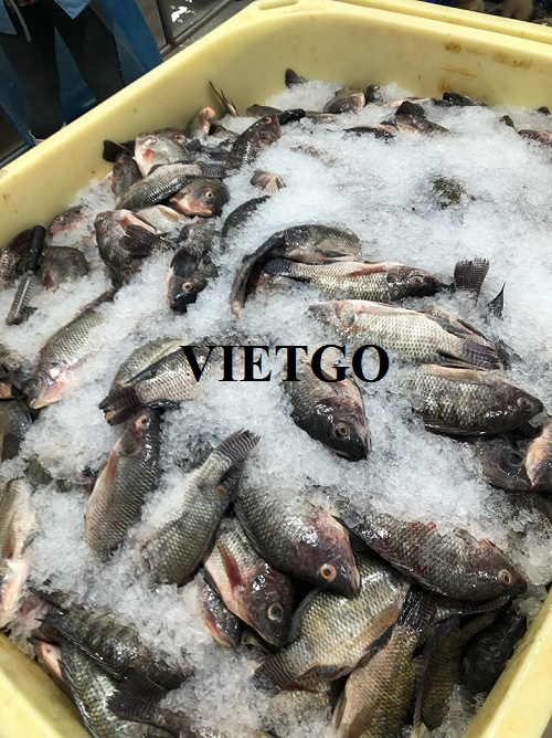 Opportunity to supply frozen tilapia to a Japanese food company