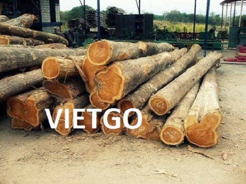 Opportunity to export 100m3 of teak logs every month to the Indian market