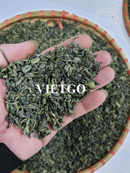 Opportunity to export green tea to the Turkish market