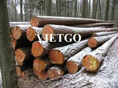 Cơ hội xuất khẩu gỗ bạch đàn tròn hàng tháng sang thị trường Iran