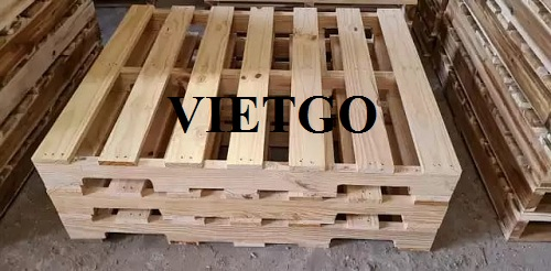 Opportunity to export pine wood pallets monthly from an American customer