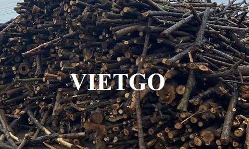 (Urgent) Opportunity to export 60 rubber log containers 40'HC monthly to the Chinese market